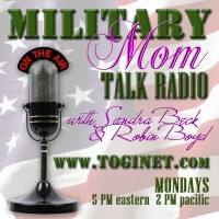 Robin Boyd, Robin K Boyd, Military Mom Talk Radio, Motherhood Talk Radio, Motherhood Incorporated, Robin Boyd Desktop Publishing, web support, blog development, office support, audio voice overs, graphic art, graphic design, virtual assistant, web maintenance, business cards, cd covers, cd cover design, cd liners, one-sheets, banner design